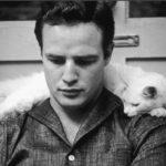 В каких женщин и мужчин влюблялся эталон красоты Марлон Брандо